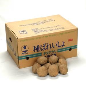 【在庫処分品】キタアカリ(北あかり)10kg箱 北海道産 じゃがいも種子 【種ばれいしょ検疫合格証票付き】 grantomato
