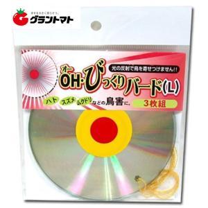 コンパル OH・びっくりバード Lサイズ(12cm) 3枚組|grantomato