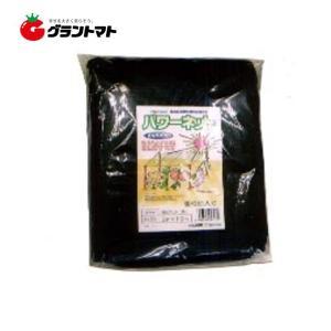 カット遮光ネット(65%)黒 W2.0m*4.0m 小山商事 grantomato