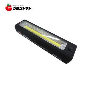 パワーイルミネーター CPI-LED 60×220×35mm:220g WING ACE 熱田資材|grantomato