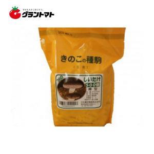 椎茸すその360 500コマ きのこ種菌 日本農林種菌|grantomato