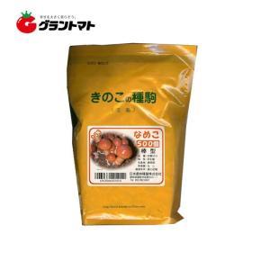 なめこ日農953 500コマ きのこ種菌 日本農林種菌|grantomato
