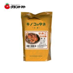 なめこ日農953 200コマ きのこ種菌 日本農林種菌|grantomato