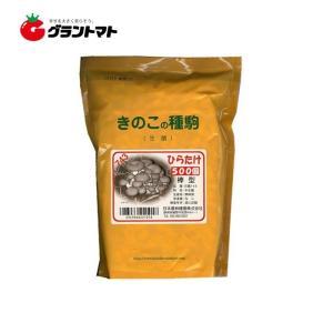 ひらたけ日農743 500コマ きのこ種菌 日本農林種菌|grantomato