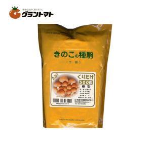 くりたけ日農A30 500コマ きのこ種菌 日本農林種菌|grantomato