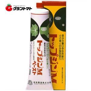 トップジンMペースト 200g 樹木用切口癒合剤 農薬 日本曹達