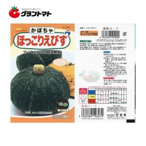 【ウタネ】ほっこりえびす南瓜 野菜種子小袋【取寄商品】【ゆうパケット可】 grantomato