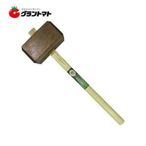 樫 木の切 (コノキリ) 大五郎|grantomato
