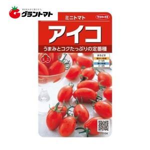 ミニトマト アイコ 美咲 野菜種子 サカタのタネ【ゆうパケット可】