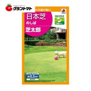 芝太郎 15ml 小袋 芝の種 (のしば) (0.5m2分) タキイ種苗 【取寄商品】【ゆうパケット可】 grantomato
