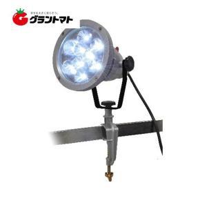 SKYWING LED投光器 LE-9B トップマン|grantomato