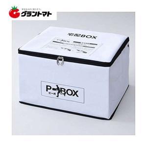 宅配BOX P-BOX(ピーボ) SPB-1 宅配ボックス 鍵 ワイヤー付 山善【取寄商品】|grantomato