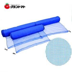 防風ネット 2m×30m 4mm目 強風軽減 防風網 日本マタイ|grantomato