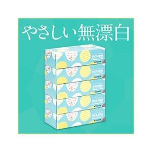ティッシュペーパーまとめ買いモーリティシュ50箱/ティッシュペーパー|green-consumer-shop