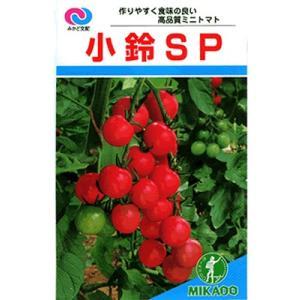 ミニトマト種 みかど交配・・・小鈴SP・・・<みかど協和のミニトマトです。種のことならお任せグリーンデポ>|green-depo-1