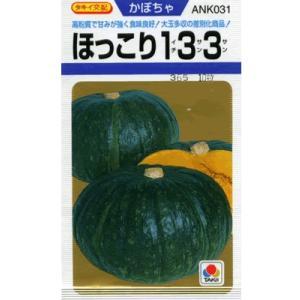 カボチャ種子 タキイ交配・・・ほっこり133・・・<タキイのカボチャです。 種のことならお任せグリーンデポ>|green-depo-1