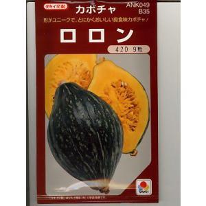 カボチャ種 タキイ交配・・・ロロン・・・<タキイのカボチャ種子です。 種のことならお任せグリーンデポ>|green-depo-1