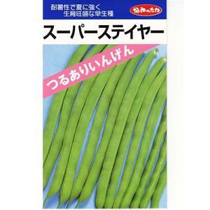 インゲン 協和・・・スーパーステイヤー・・・<協和のつるありインゲンです。 種のことならお任せグリーンデポ>|green-depo-1