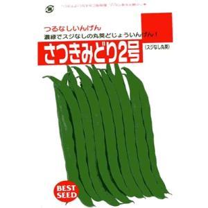 インゲン タキイ・・・さつきみどり2号・・・<タキイのつるなしインゲンです。 種のことならお任せグリーンデポ>|green-depo-1