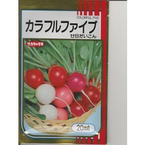 二十日ダイコン サカタ・・・カラフルファイブ・・・<サカタの二十日ダイコンです。 種のことならお任せグリーンデポ>|green-depo-1
