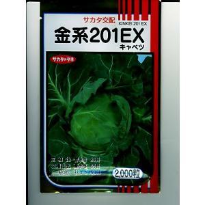 キャベツ サカタ交配・・・金系201EX・・・<サカタのキャベツです。 種のことならお任せグリーンデポ>|green-depo-1