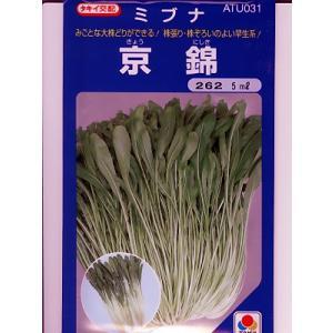 ミブナ タキイ交配・・・京錦壬生菜・・・<タキイのミブナです。 種のことならお任せグリーンデポ>|green-depo-1