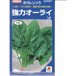ほうれん草 タキイ交配・・・強力オーライ・・・<タキイのほうれん草です。 種のことならお任せグリーンデポ>|green-depo-1