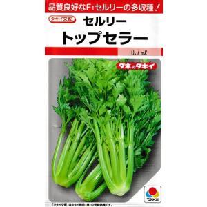 セルリー タキイ交配・・・トップセラー・・・<タキイのセルリーです。 種のことならお任せグリーンデポ>|green-depo-1