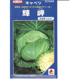 キャベツの種 タキイ交配・・・輝岬・・・<タキイのキャベツです。 種のことならお任せグリーンデポ>|green-depo-1