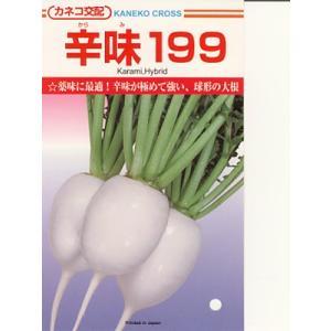 大根種 カネコ交配・・・辛味199・・・<カネコの大根種です。種のことならお任せグリーンデポ>