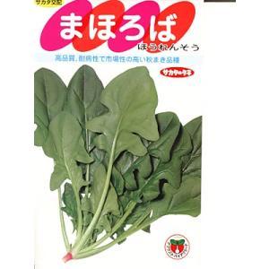 ほうれん草種 サカタ交配・・・まほろば・・・<サカタのほうれん草です。種のことならお任せグリーンデポ>|green-depo-1