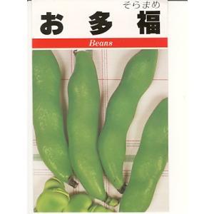 お多福は、昔からある固定種のソラマメ品種です。  家庭菜園を中心に、根強い人気があり、ファンも多い。...