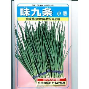 葉ネギ 味九条 武蔵野種苗園 <武蔵野の葉ネギです。種のことならお任せグリーンデポ>|green-depo-1