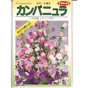 カンパニュラ サカタのタネ・・・メイミックス・・・<サカタのカンパニュラです。種のことならお任せグリーンデポ>|green-depo-1