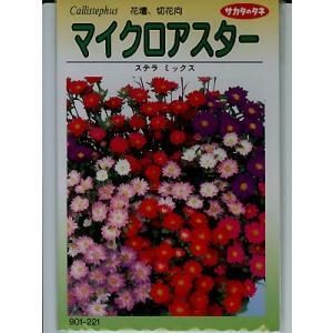 アスターの種 サカタのタネ マイクロアスターステラミックス <サカタのタネのアスター種子です。種のことならグリーンデポ>|green-depo-1