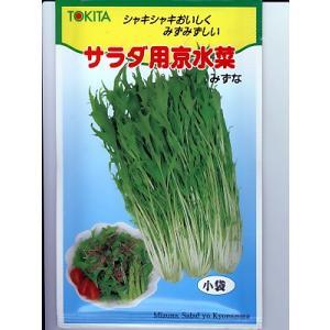 ミズナ トキタ種苗・・・サラダ用京水菜・・・<トキタのミズナ種子です。種のことならグリーンデポ>|green-depo-1