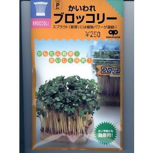 かいわれブロッコリー<カイワレ用のブロッコリー種子です。>|green-depo-1