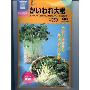 かいわれ大根種 <中原採種場のスプラウト用種子です。>|green-depo-1