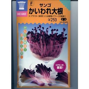 スプラウト種子 サンゴかいわれ大根  <中原種苗のかいわれ大根種子です。>|green-depo-1