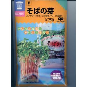 スプラウト種子  そばの芽 <中原採種場のそばの芽の種です。>|green-depo-1