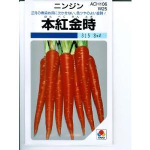 ニンジン種子 本紅金時にんじん <タキイ種苗の伝統野菜人参種です。>|green-depo-1