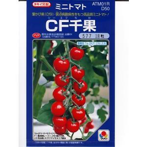ミニトマト種子 タキイ交配 CF千果   タキイのミニトマト品種です。|green-depo-1