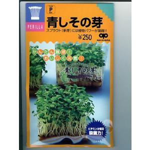 スプラウト種子  青しその芽 <中原採種場の青しその芽の種です。>|green-depo-1