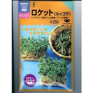 スプラウト種子 ロケット(ルッコラ)  <中原採種場のスプラウト用のロケット種子です。>|green-depo-1