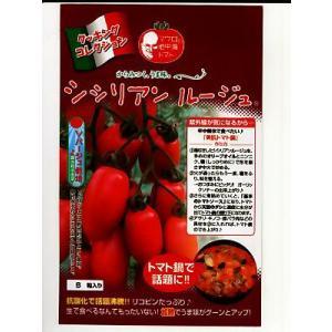 シシリアン ルージュ  パイオニアエコサイエンスの中玉トマト種子です|green-depo-1