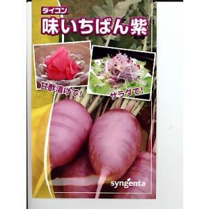 味いちばん紫ダイコン種 シンジェンタシードのダイ...の商品画像