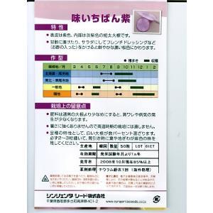 味いちばん紫ダイコン種 シンジェンタシードのダ...の詳細画像1