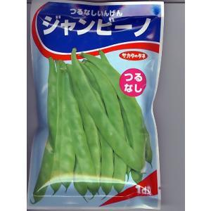 インゲンの種 サカタのタネ・・・つるなしいんげんジャンビーノ・・・<サカタのタネのつるなしインゲンです>|green-depo-1
