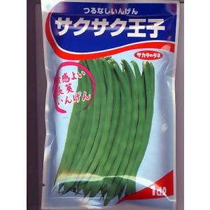 つるなしインゲン種 サカタのタネ・・・サクサク王子・・・<サカタのタネのインゲン種子です。種のことならグリーンデポ>|green-depo-1