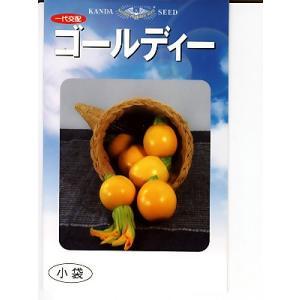 丸型ズッキーニの種 神田育種農場 ゴールディー|green-depo-1